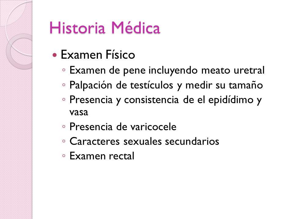 Historia Médica Examen Físico Examen de pene incluyendo meato uretral