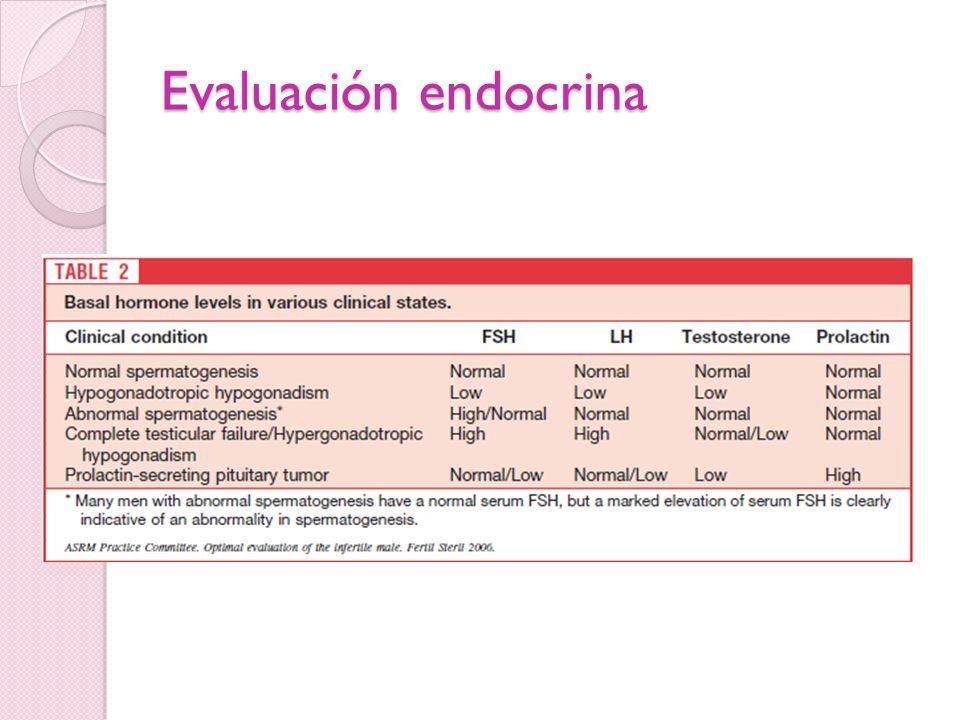 Evaluación endocrina
