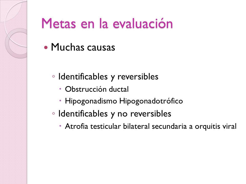 Metas en la evaluación Muchas causas Identificables y reversibles