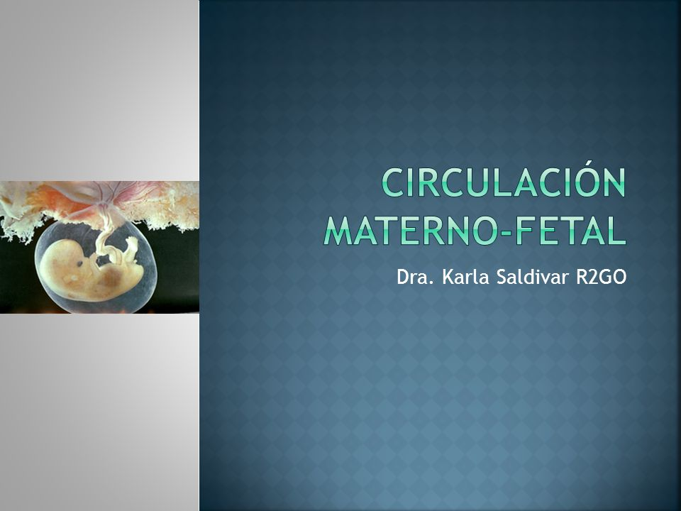 Circulación Materno-Fetal