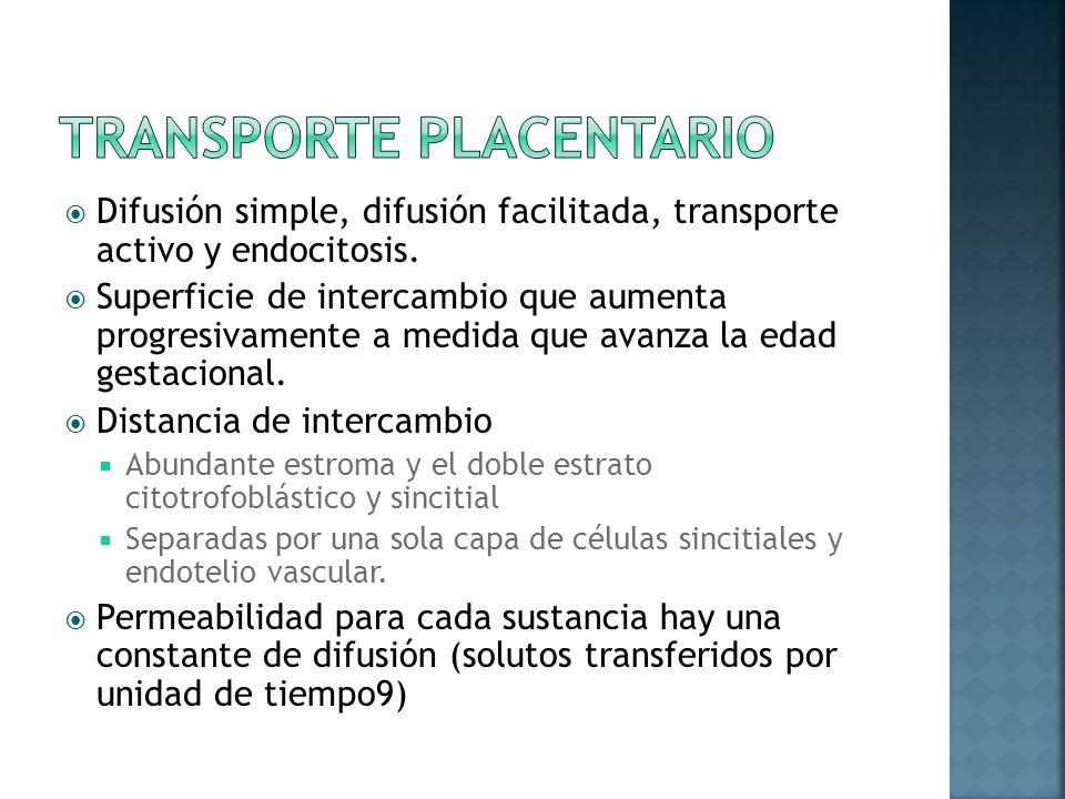 TRANSPORTE PLACENTARIO