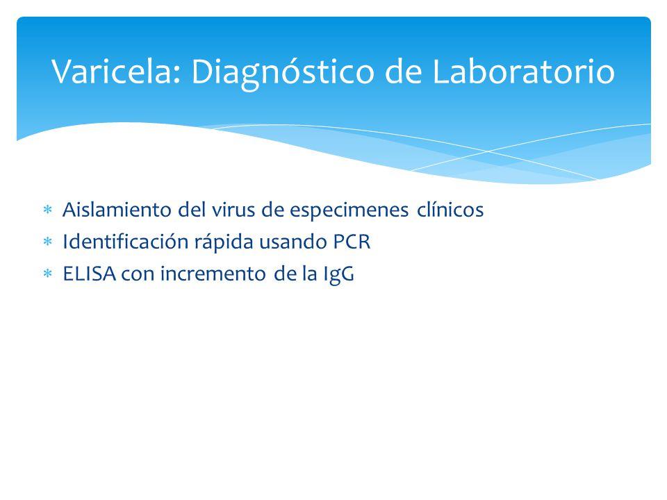 Varicela: Diagnóstico de Laboratorio