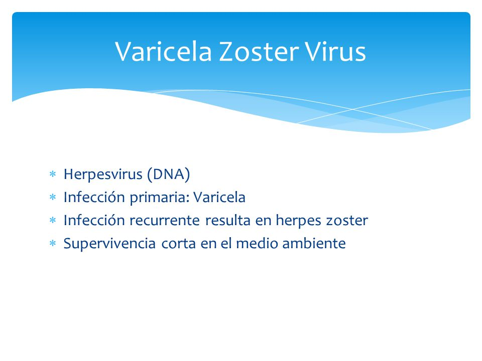 Varicela Zoster Virus Herpesvirus (DNA) Infección primaria: Varicela