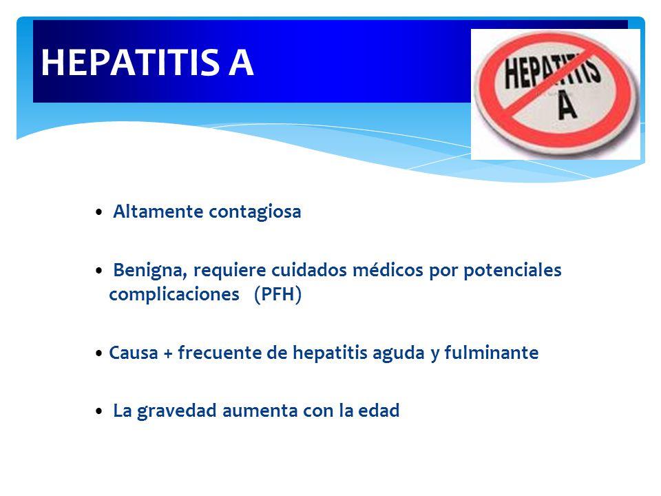 HEPATITIS A Altamente contagiosa