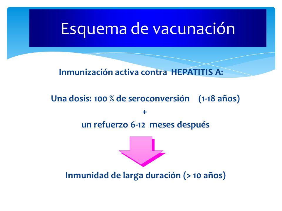 Esquema de vacunación Una dosis: 100 % de seroconversión (1-18 años) +
