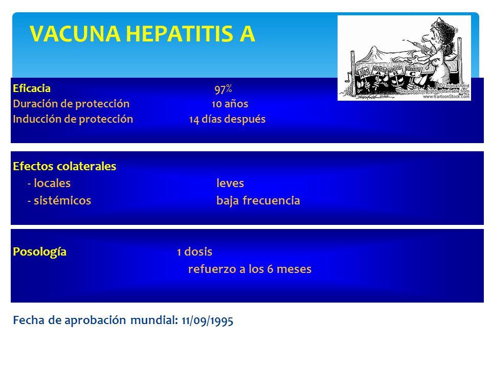 VACUNA HEPATITIS A Efectos colaterales - locales leves
