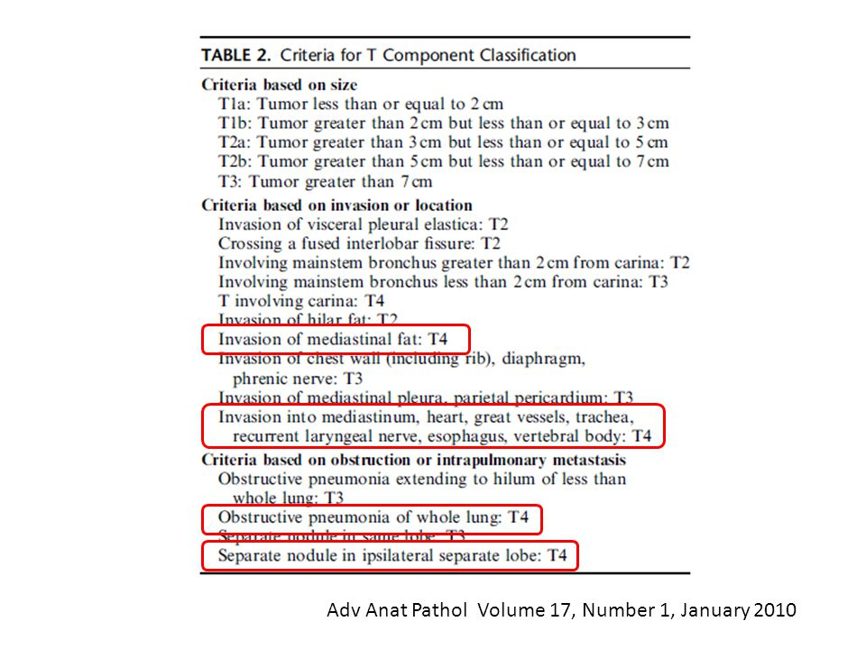 Adv Anat Pathol Volume 17, Number 1, January 2010
