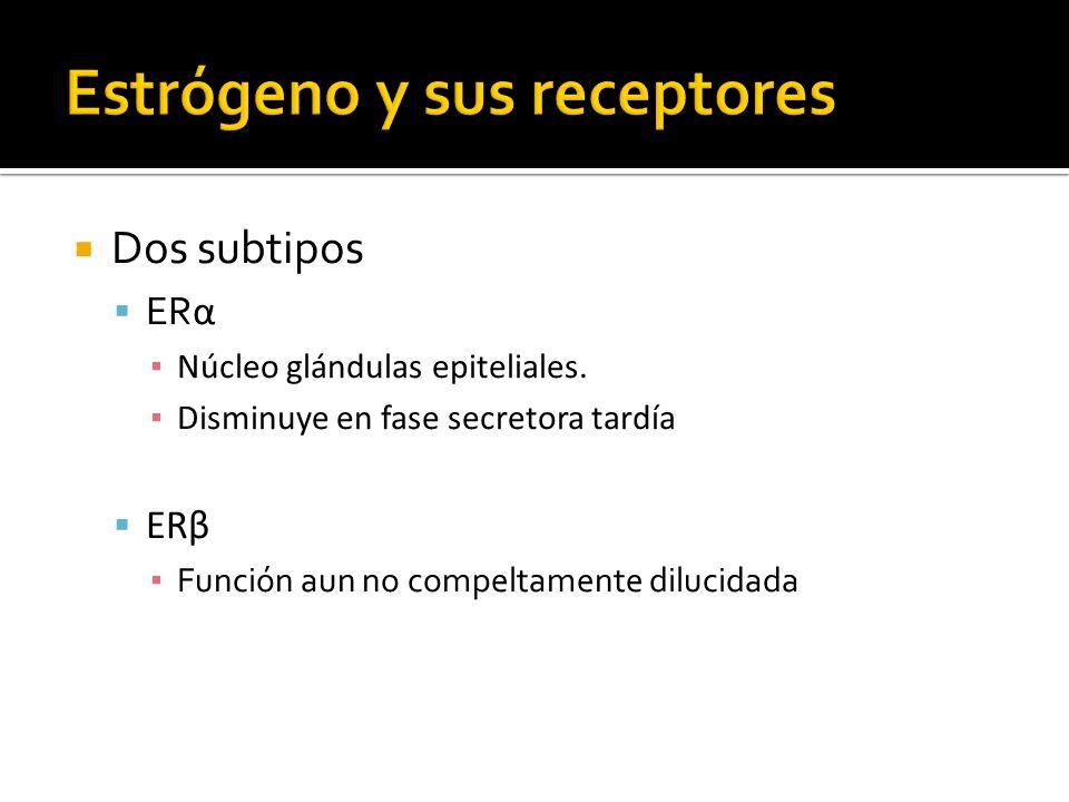 Estrógeno y sus receptores