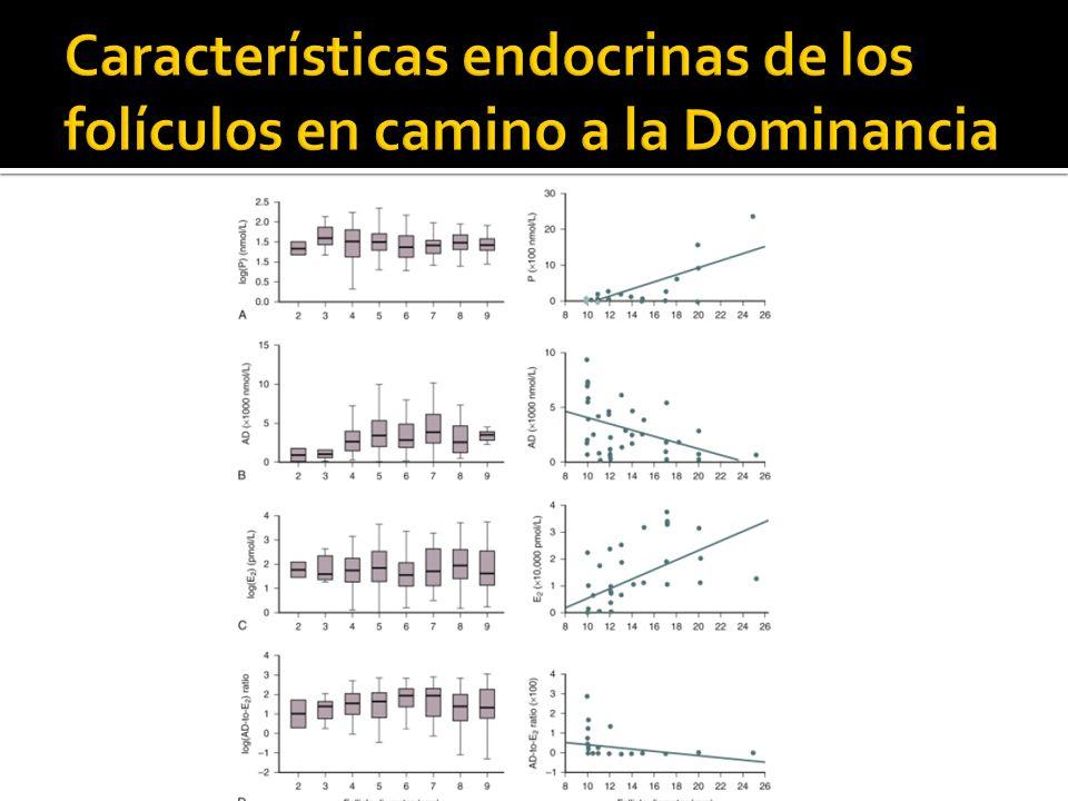 Características endocrinas de los folículos en camino a la Dominancia