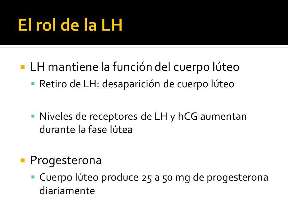 El rol de la LH LH mantiene la función del cuerpo lúteo Progesterona