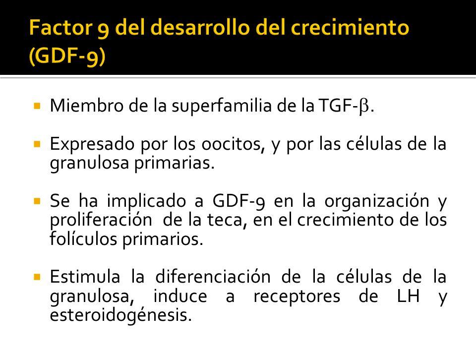 Factor 9 del desarrollo del crecimiento (GDF-9)