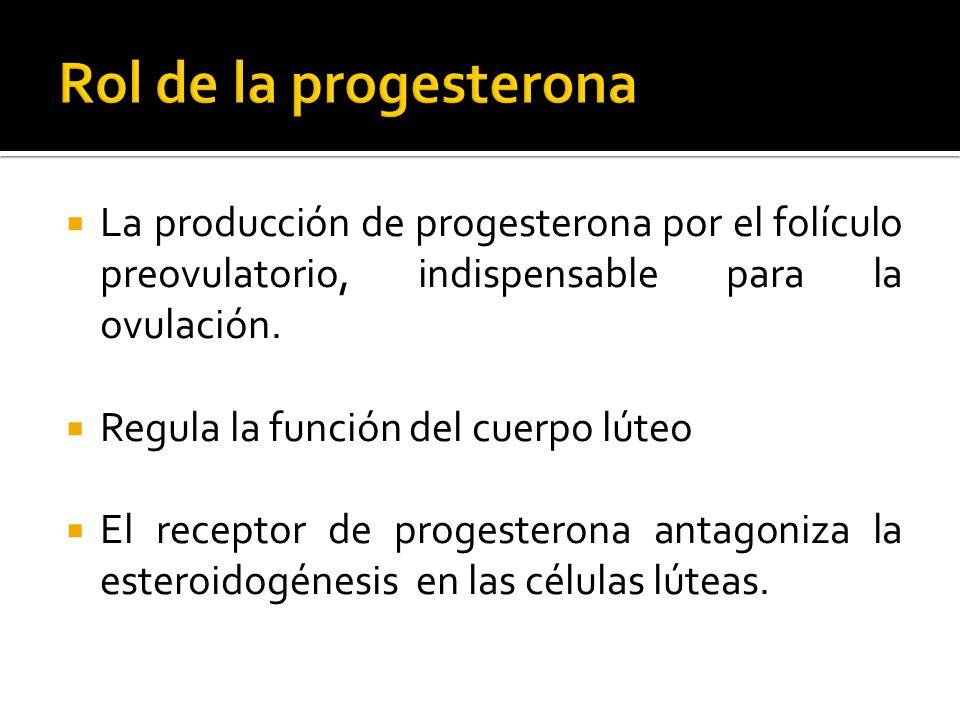 Rol de la progesterona La producción de progesterona por el folículo preovulatorio, indispensable para la ovulación.