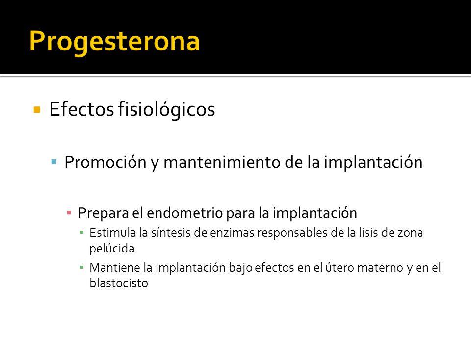 Progesterona Efectos fisiológicos
