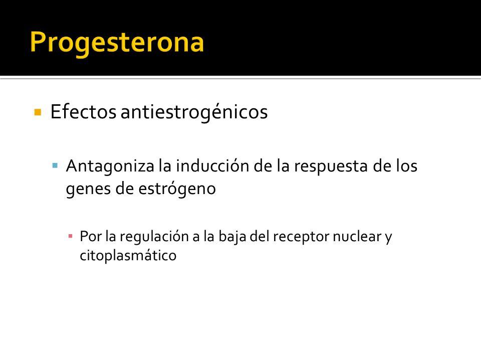 Progesterona Efectos antiestrogénicos
