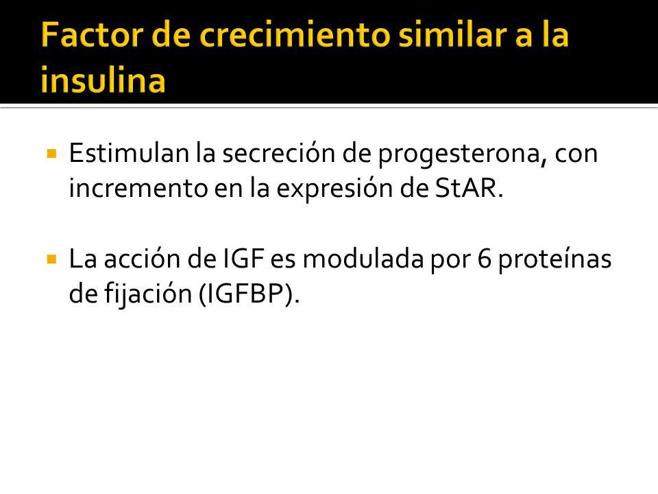 Factor de crecimiento similar a la insulina