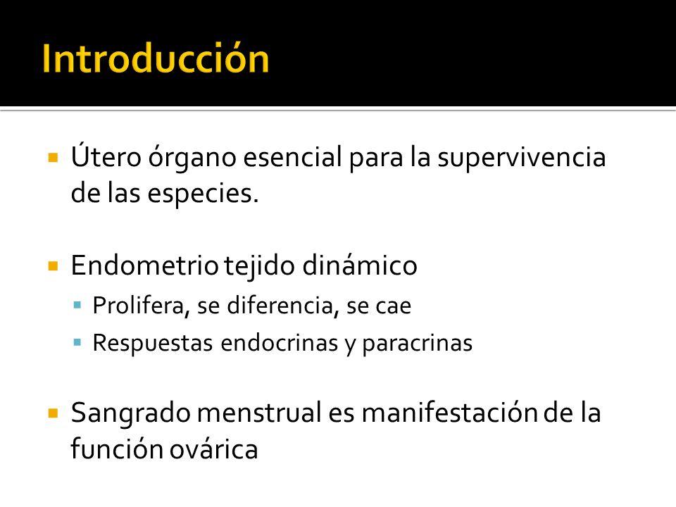 Introducción Útero órgano esencial para la supervivencia de las especies. Endometrio tejido dinámico.