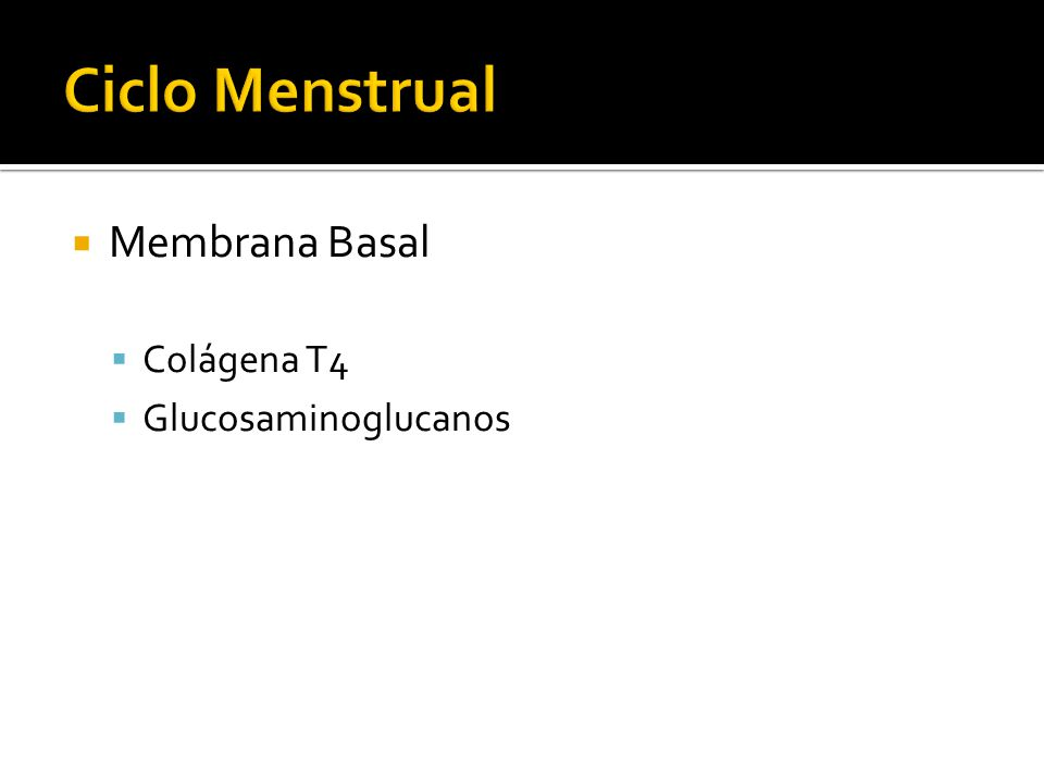 Ciclo Menstrual Membrana Basal Colágena T4 Glucosaminoglucanos