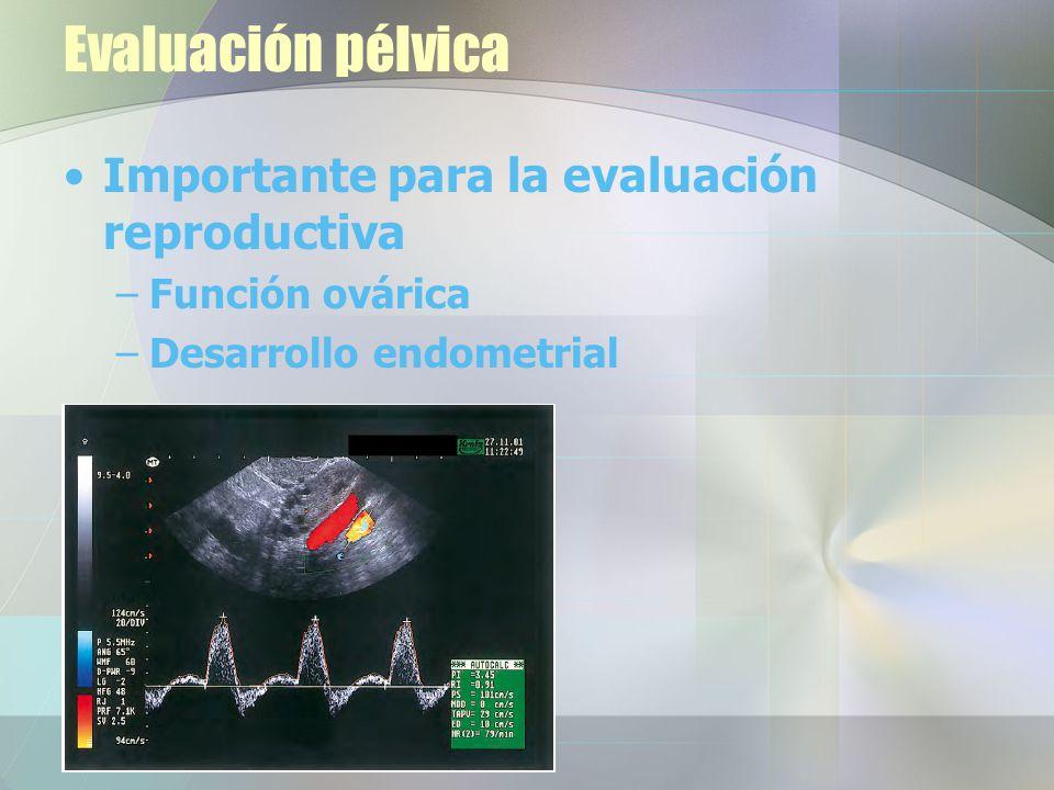 Evaluación pélvica Importante para la evaluación reproductiva
