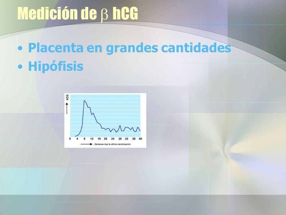Medición de b hCG Placenta en grandes cantidades Hipófisis