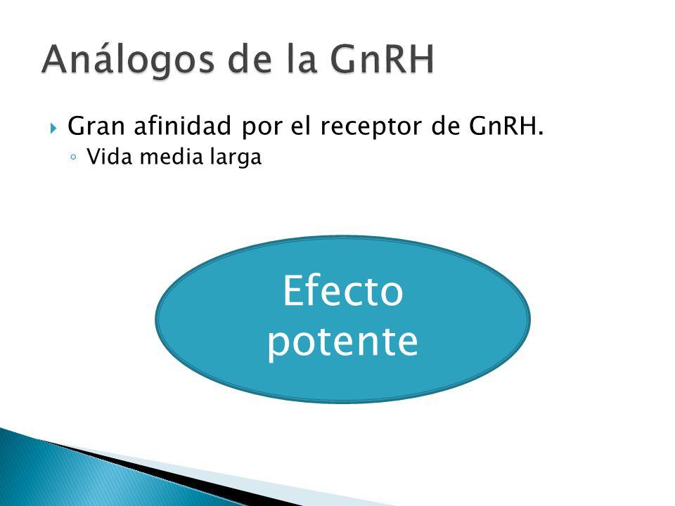 Efecto potente Análogos de la GnRH