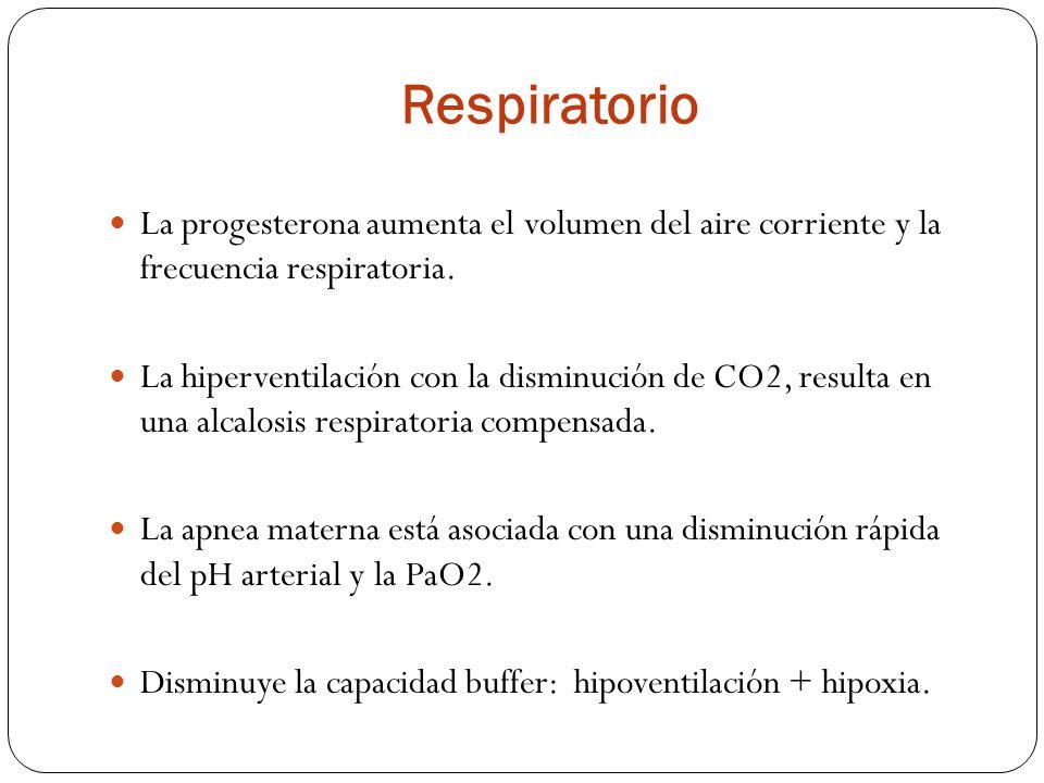 Respiratorio La progesterona aumenta el volumen del aire corriente y la frecuencia respiratoria.