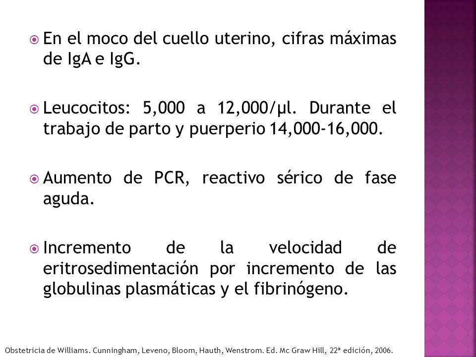 En el moco del cuello uterino, cifras máximas de IgA e IgG.