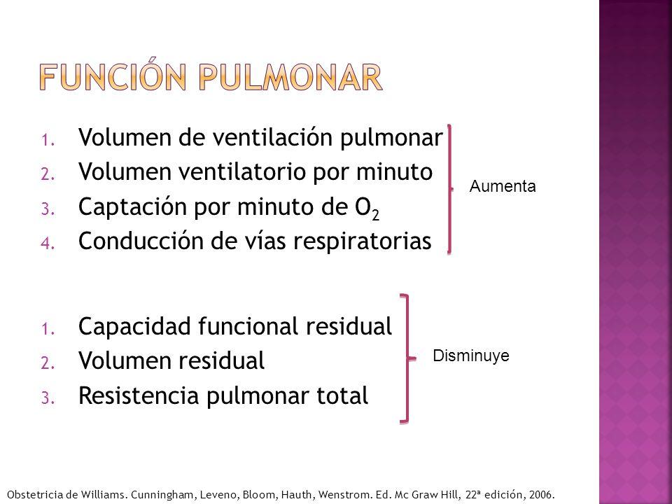 Función pulmonar Volumen de ventilación pulmonar