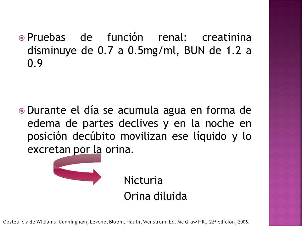 Pruebas de función renal: creatinina disminuye de 0. 7 a 0