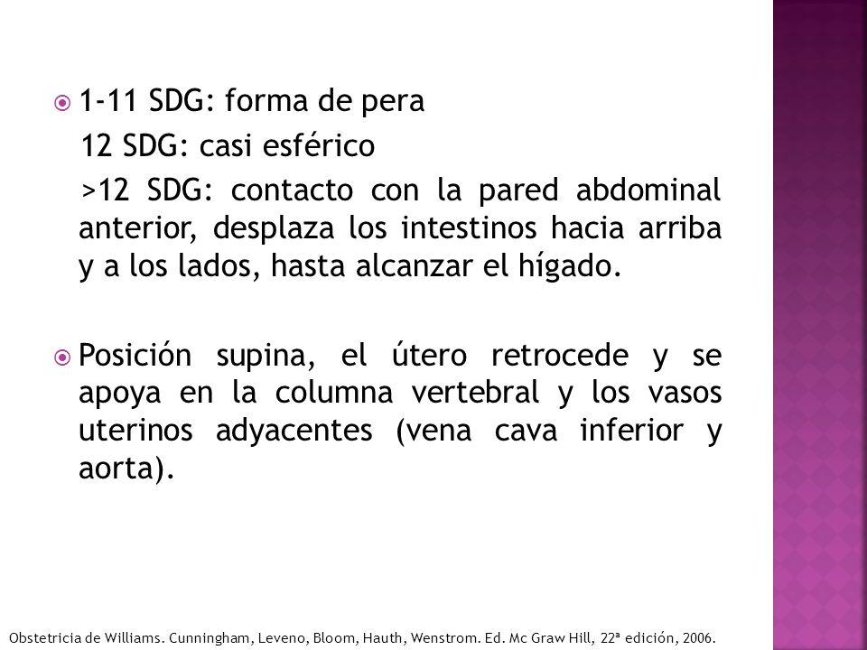 1-11 SDG: forma de pera 12 SDG: casi esférico