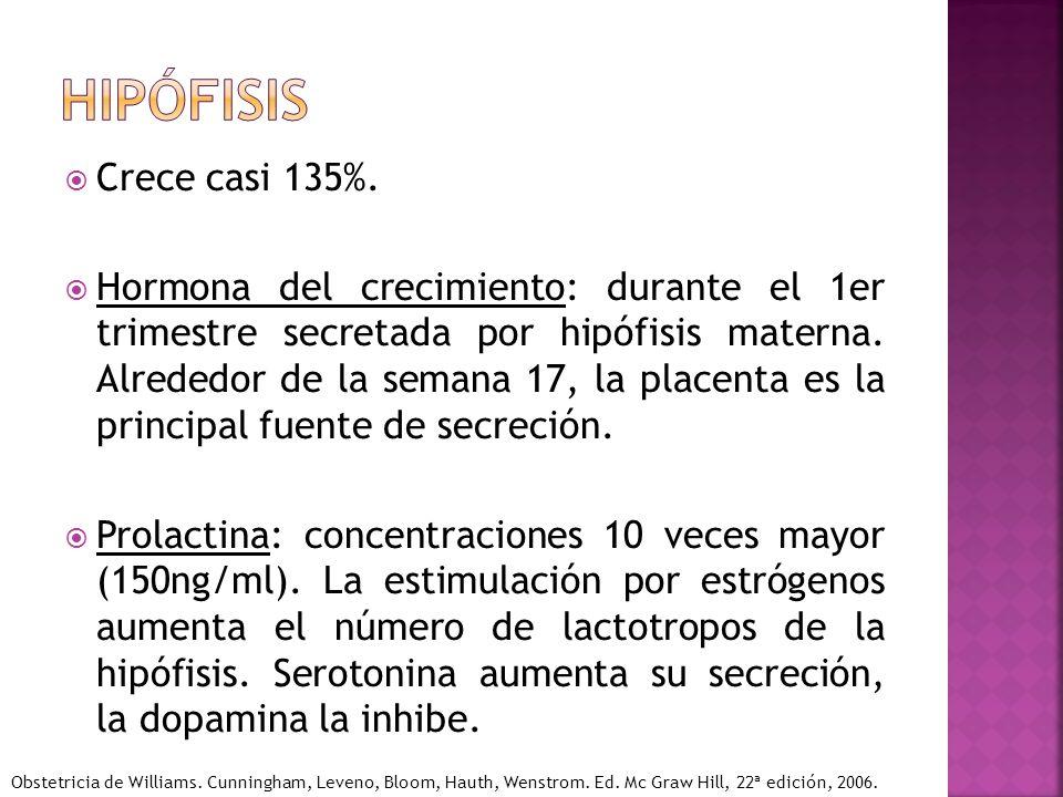 hipófisis Crece casi 135%.