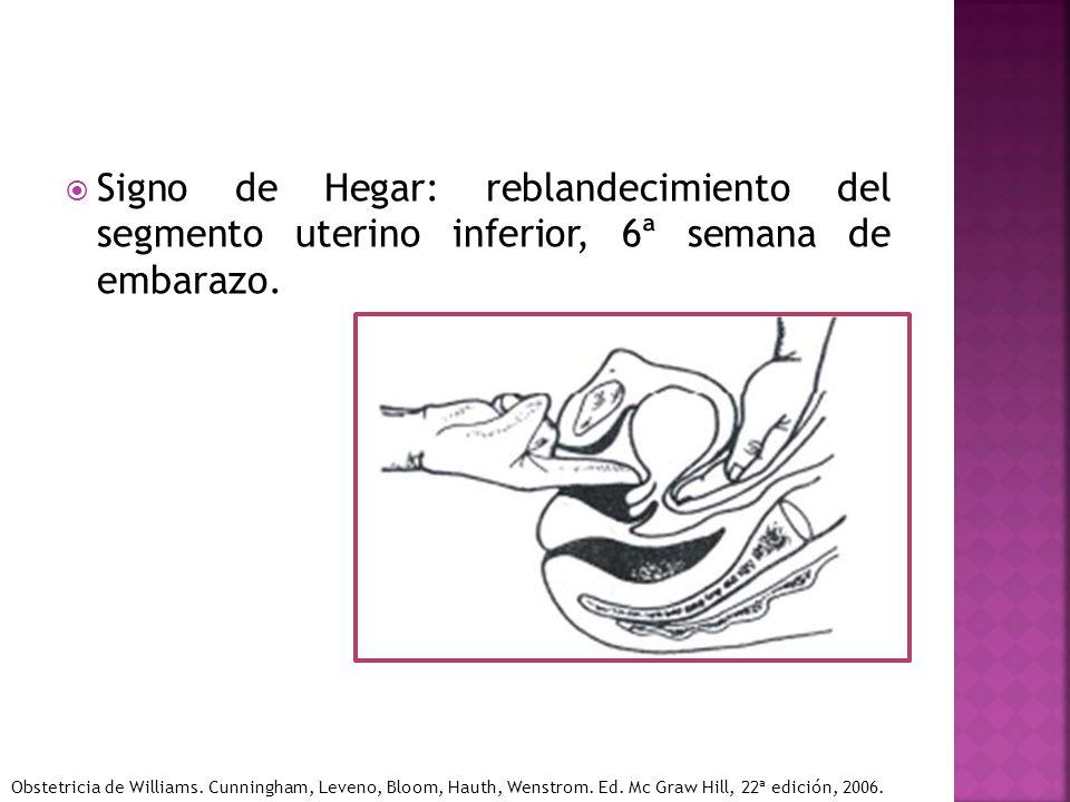 Signo de Hegar: reblandecimiento del segmento uterino inferior, 6ª semana de embarazo.