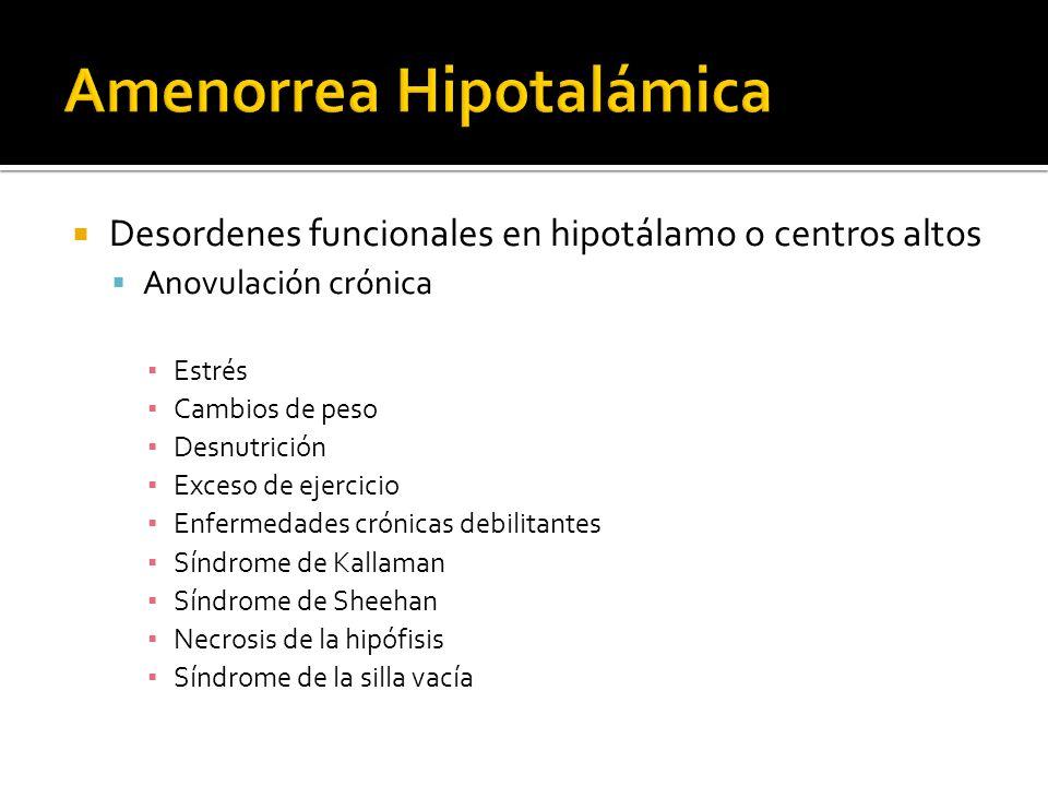Amenorrea Hipotalámica