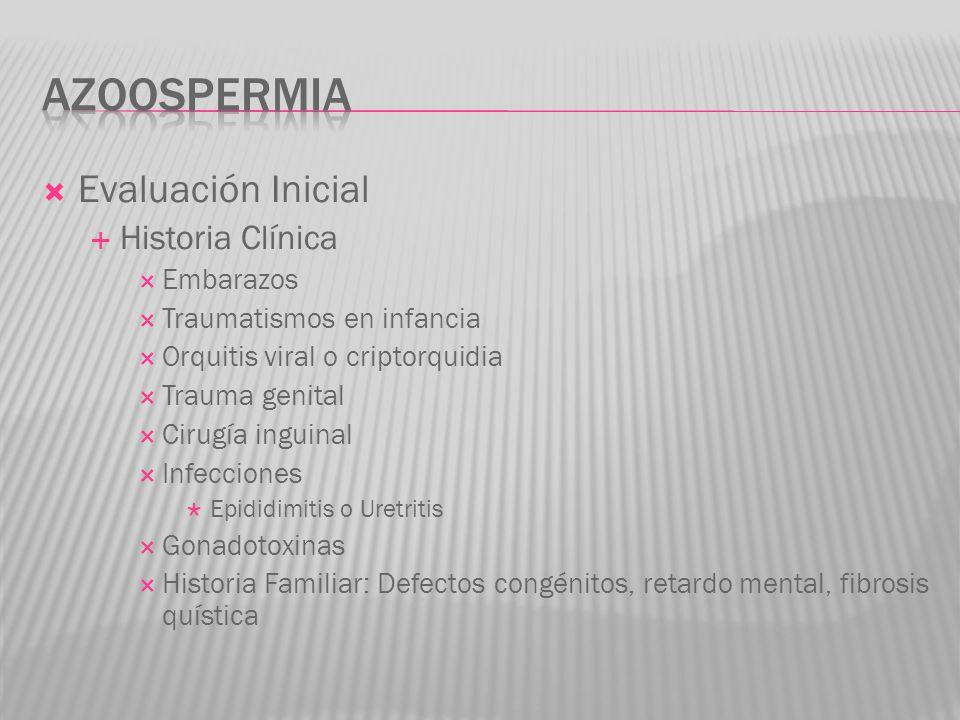 azoospermia Evaluación Inicial Historia Clínica Embarazos