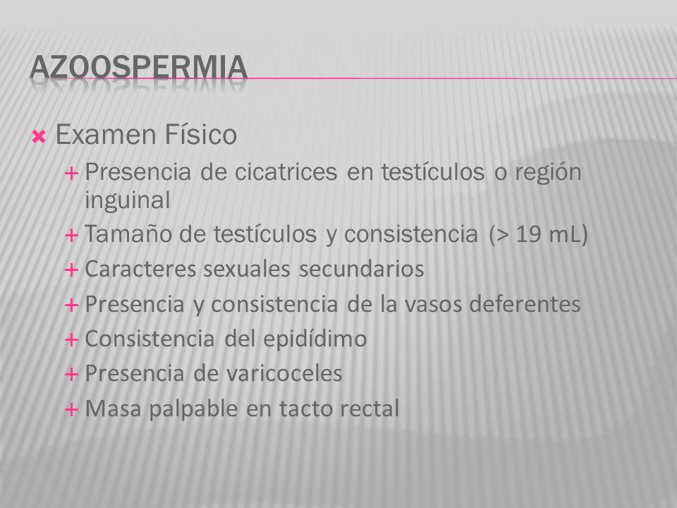 Azoospermia Examen Físico