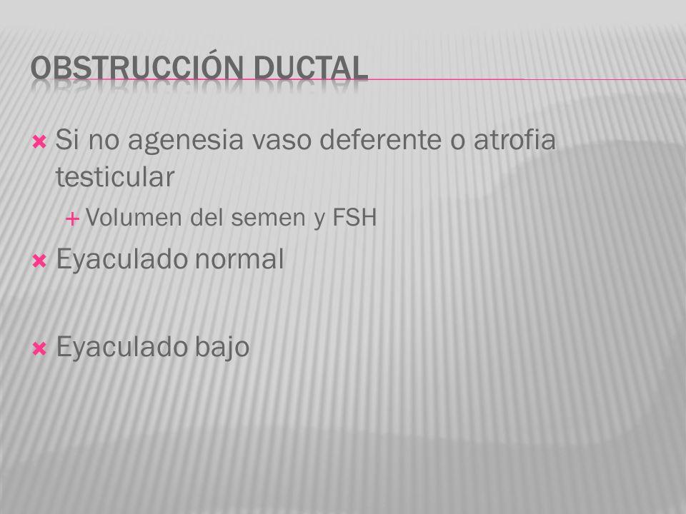 Obstrucción ductal Si no agenesia vaso deferente o atrofia testicular