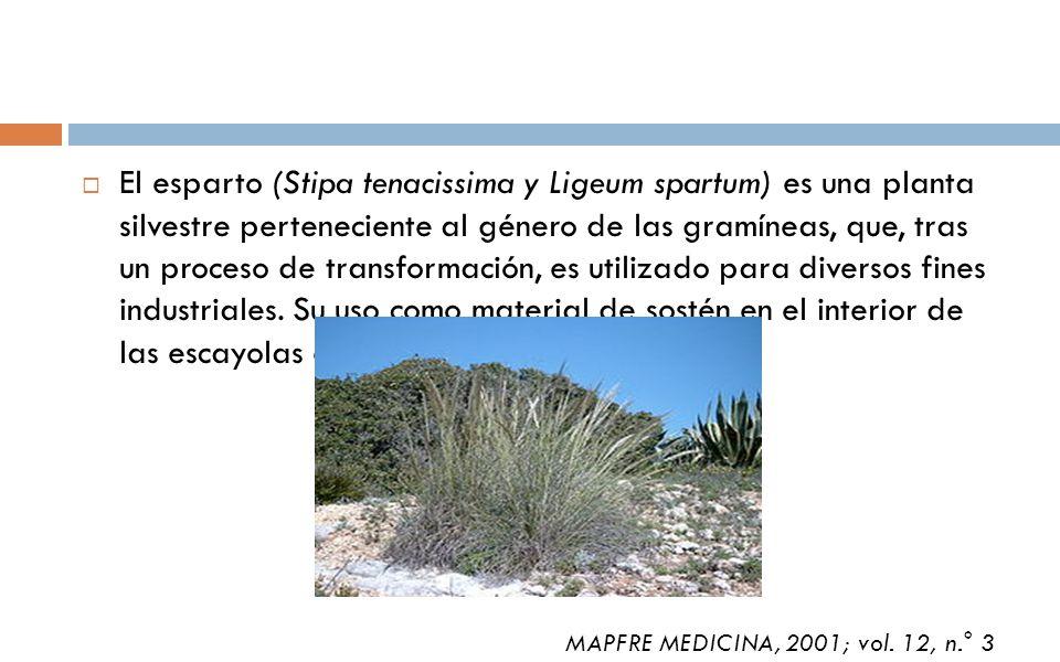 El esparto (Stipa tenacissima y Ligeum spartum) es una planta silvestre perteneciente al género de las gramíneas, que, tras un proceso de transformación, es utilizado para diversos fines industriales. Su uso como material de sostén en el interior de las escayolas es uno de ellos.