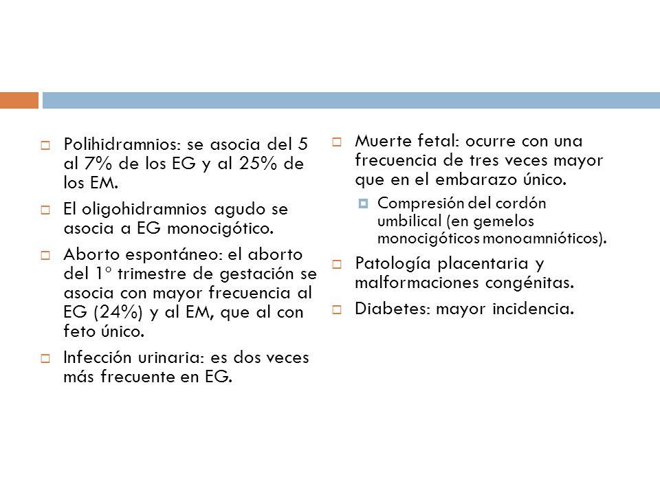 Patología placentaria y malformaciones congénitas.