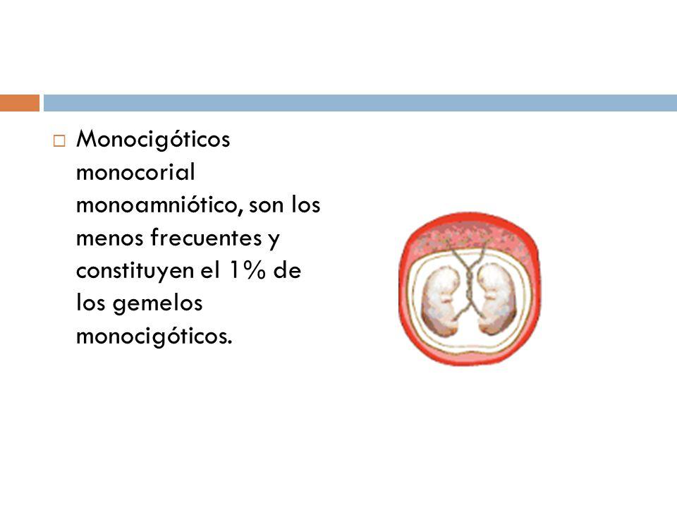 Monocigóticos monocorial monoamniótico, son los menos frecuentes y constituyen el 1% de los gemelos monocigóticos.