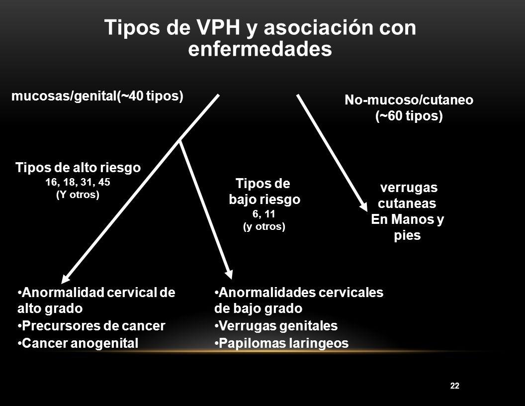 Tipos de VPH y asociación con enfermedades mucosas/genital(~40 tipos)