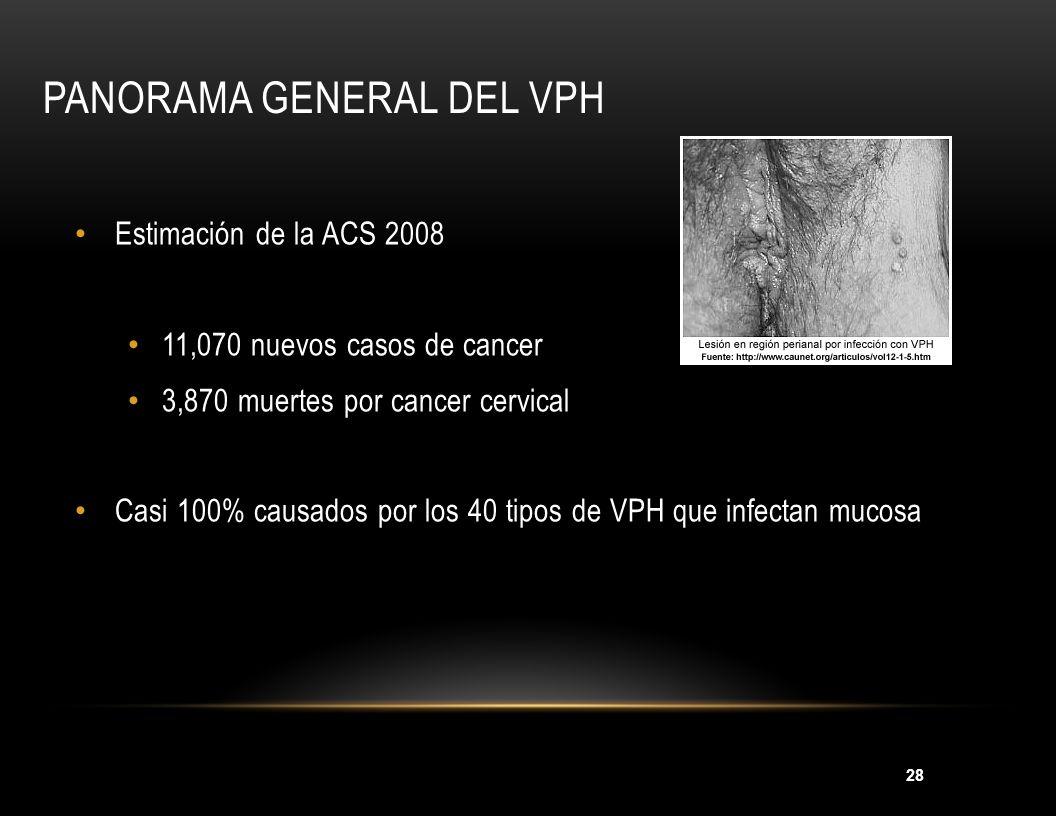Panorama general del VPH