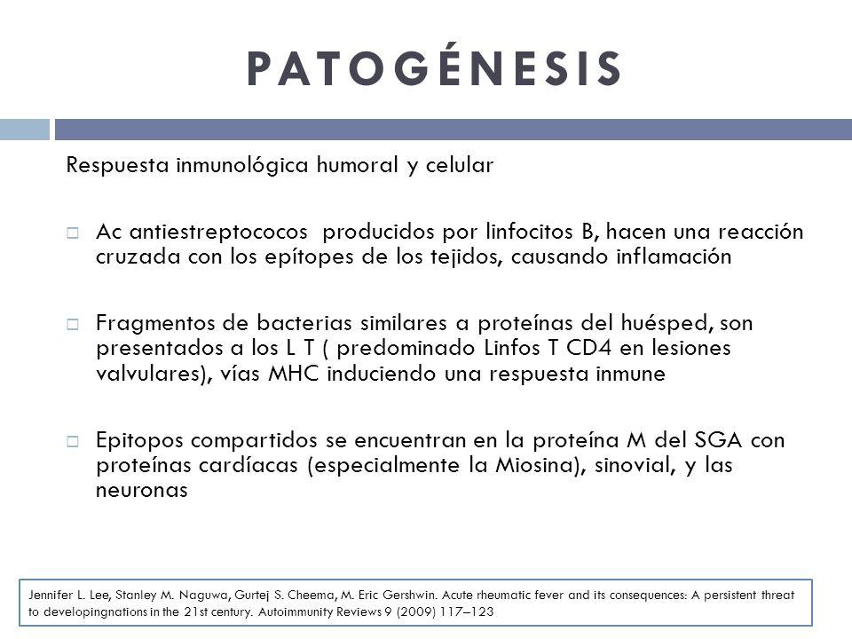 PATOGÉNESIS Respuesta inmunológica humoral y celular