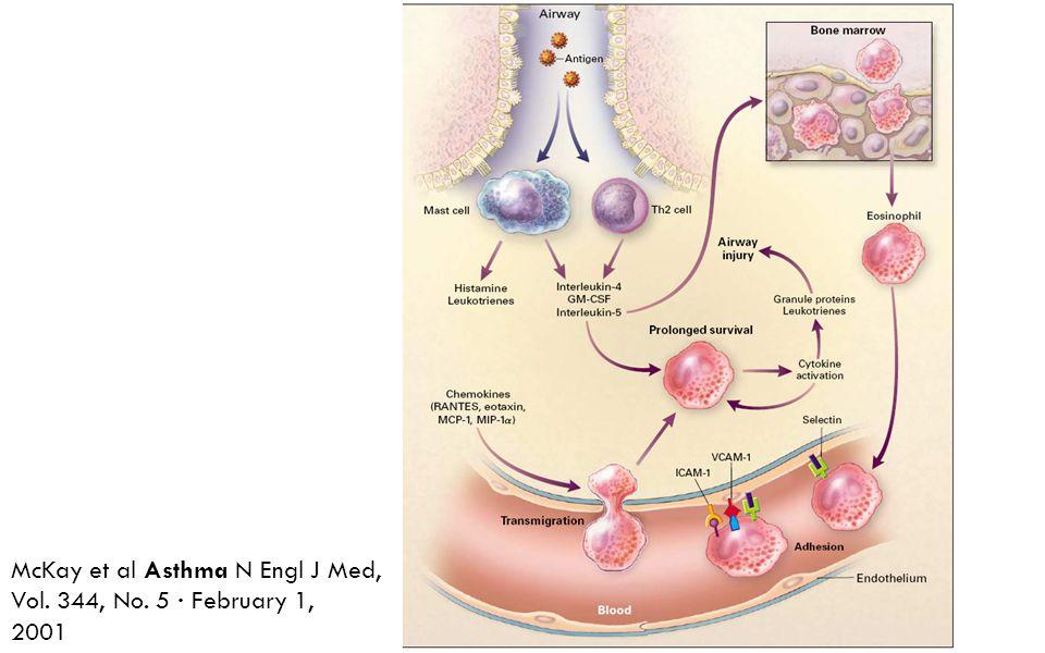 McKay et al Asthma N Engl J Med, Vol. 344, No. 5 · February 1,