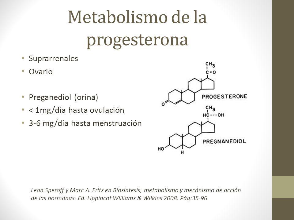 Metabolismo de la progesterona