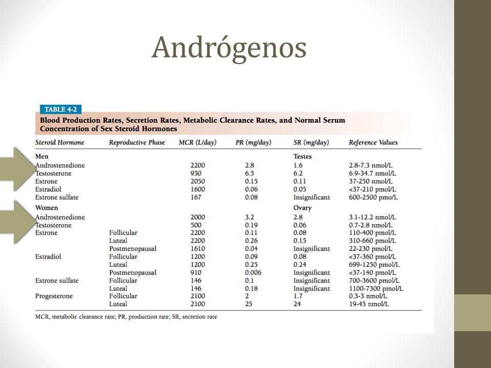 Andrógenos