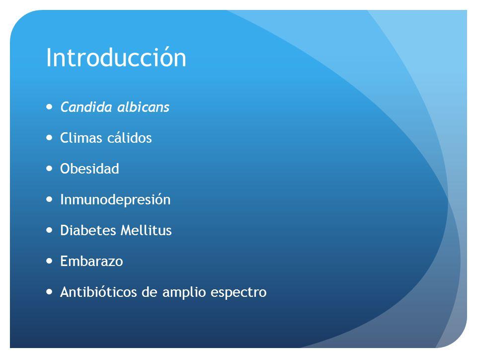 Introducción Candida albicans Climas cálidos Obesidad Inmunodepresión