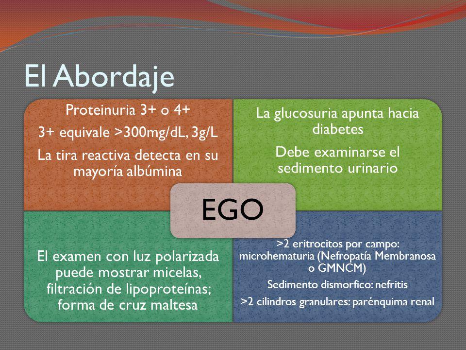 El Abordaje EGO. Proteinuria 3+ o 4+ 3+ equivale >300mg/dL, 3g/L. La tira reactiva detecta en su mayoría albúmina.