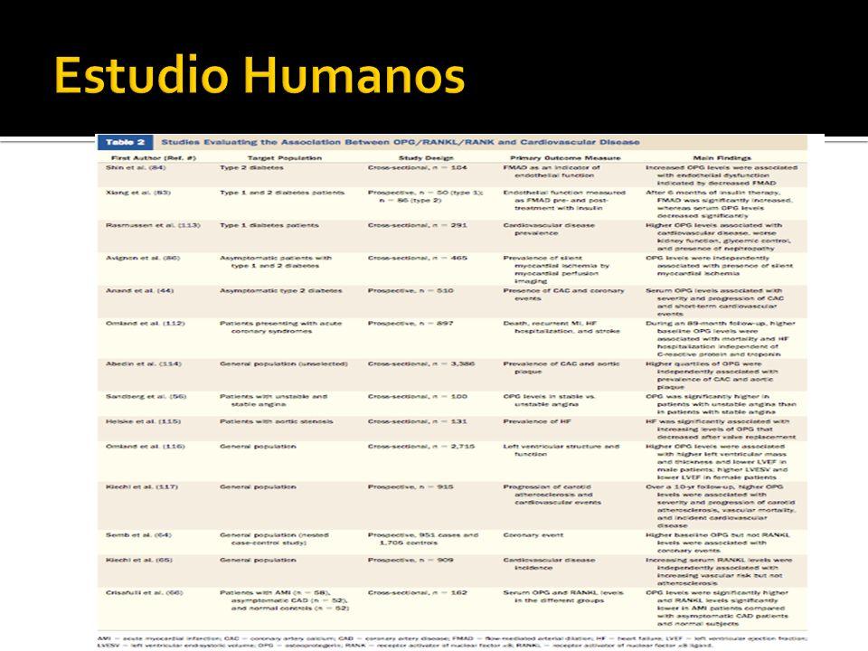 Estudio Humanos