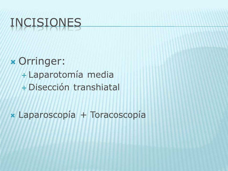 INCISIONES Orringer: Laparotomía media Disección transhiatal