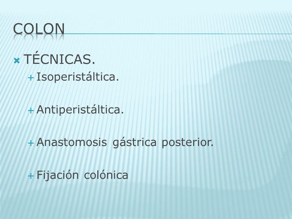 COLON TÉCNICAS. Isoperistáltica. Antiperistáltica.