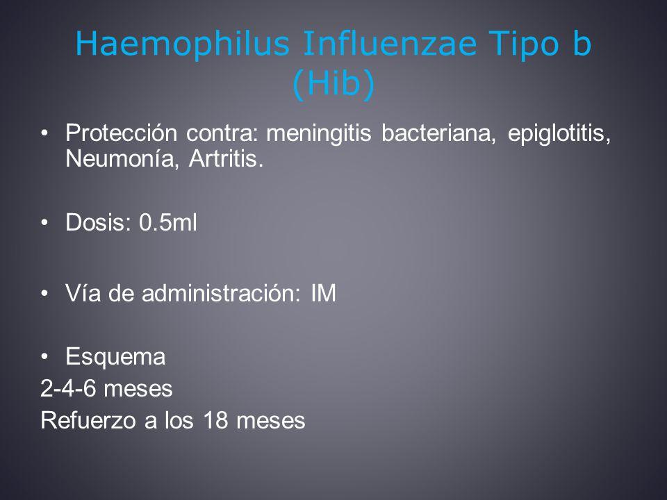 Haemophilus Influenzae Tipo b (Hib)